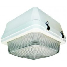 Canopy Lighting AC1507 Series
